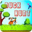 Duck Hunt 90s